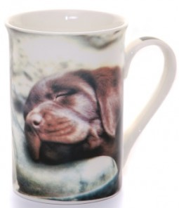 Mug Pup on Boot