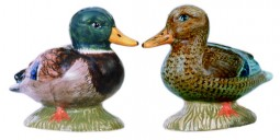 Mallard salt and pepper