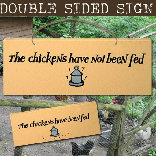 chickens fed or not