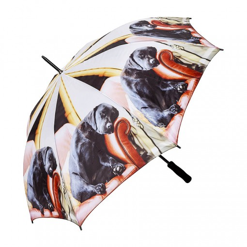 Umbrella Sleeping Lab